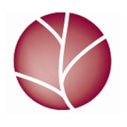 Cogerial - Expertise comptable - Toulouse