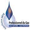 Professionnel Gaz Naturel