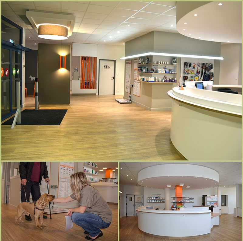 Cabinet radiologie lesneven - Cabinet thierry location ...