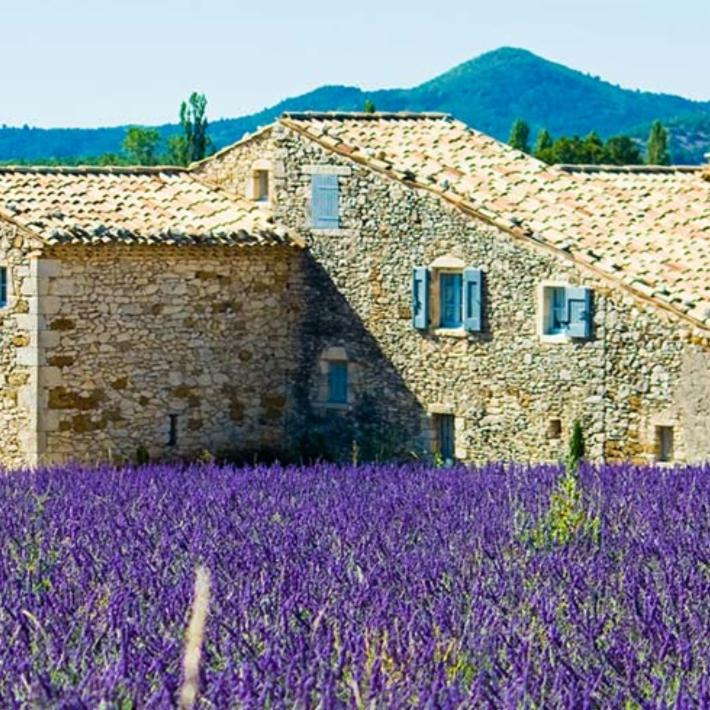 Demeures proven ales agence immobili re 369 chemin for Agence immobiliere isle sur la sorgue