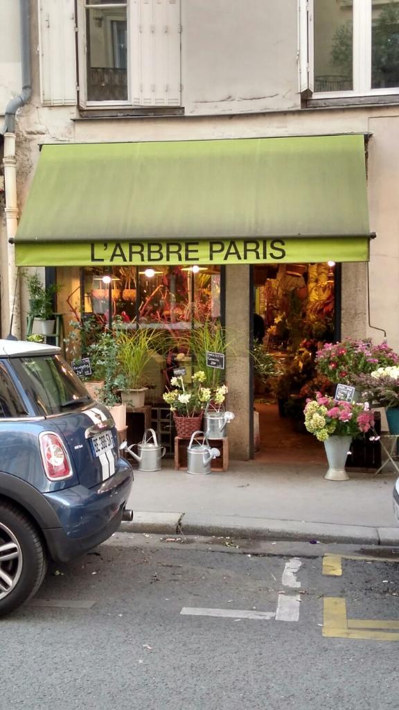 Arbre fleuriste 48 rue du cherche midi 75006 paris for Adresse fleuriste