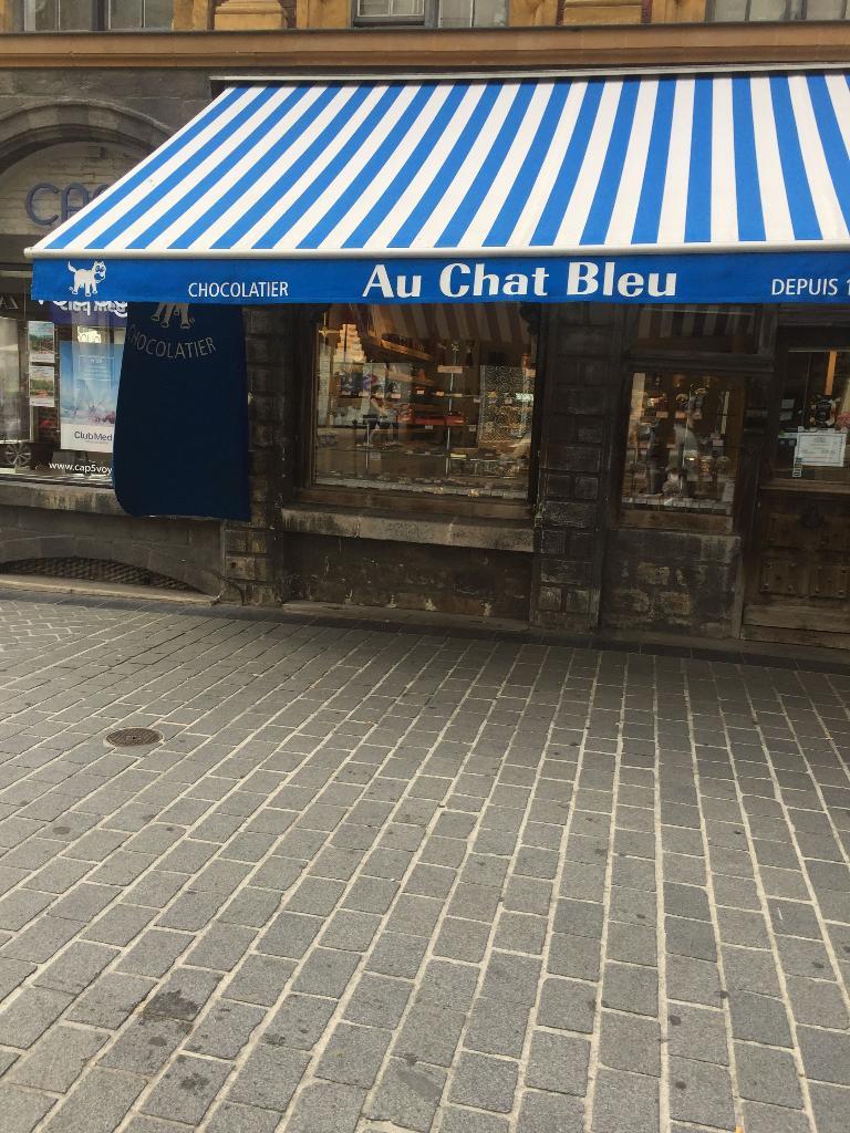 le chat bleu touquet