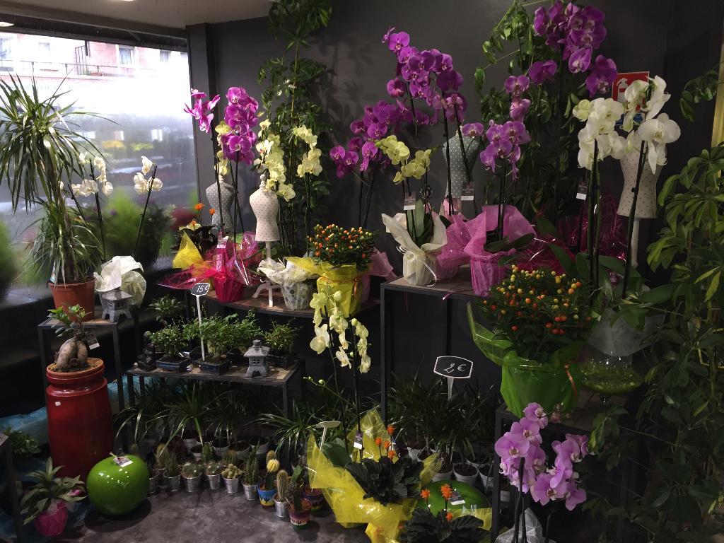 beauty fleurs fleuriste 7 avenue franklin roosevelt 59600 maubeuge adresse horaire. Black Bedroom Furniture Sets. Home Design Ideas