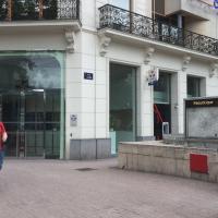 chat à vendre suisse