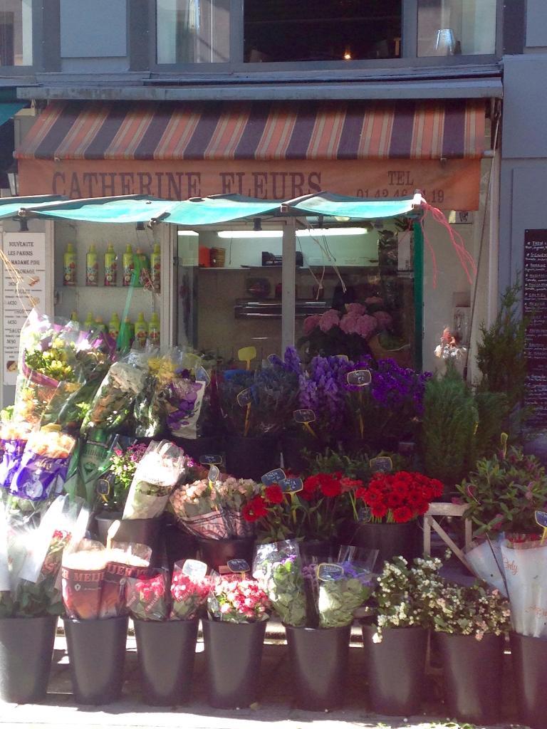 Djezzar salim fleuriste 7 rue cadet 75009 paris for Adresse fleuriste