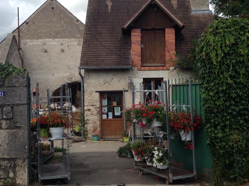 correira da silva decoration florale josé - fleuriste, 21 rue