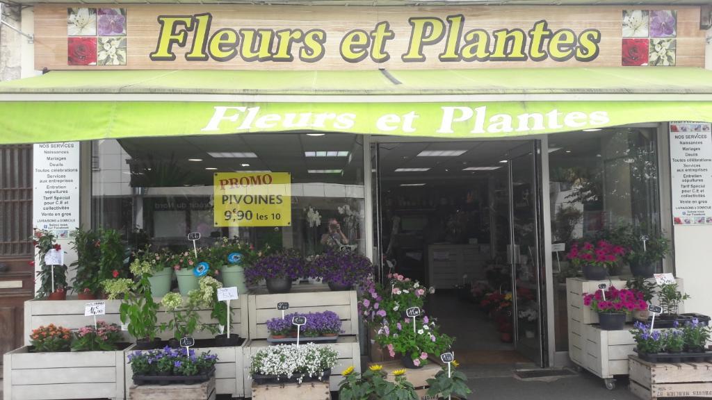 Fleurs et plantes fleuriste 59 bis rue paris 60200 for Adresse fleuriste