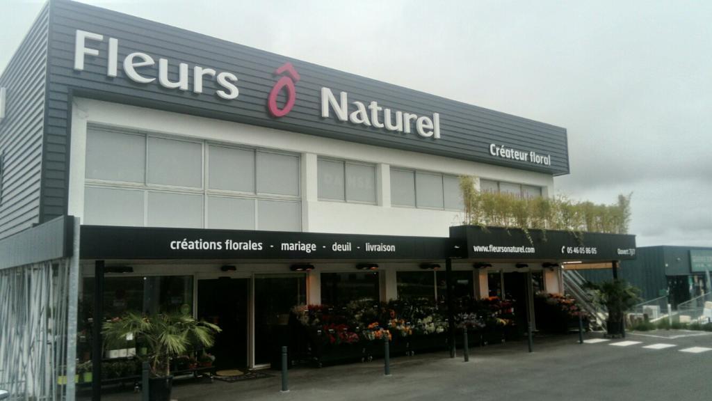 Fleurs naturel fleuriste 22 rue antoine de lavoisier for Adresse fleuriste