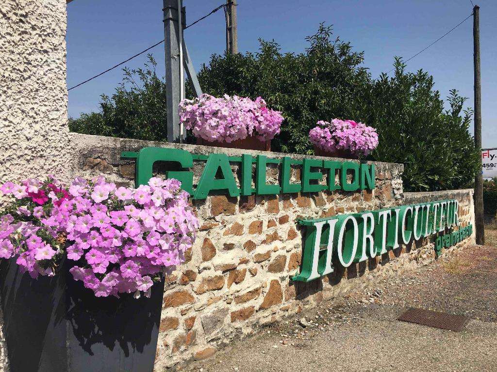 Gailleton fleurs et plantes fleuriste le tupinier 69290 for Adresse fleuriste