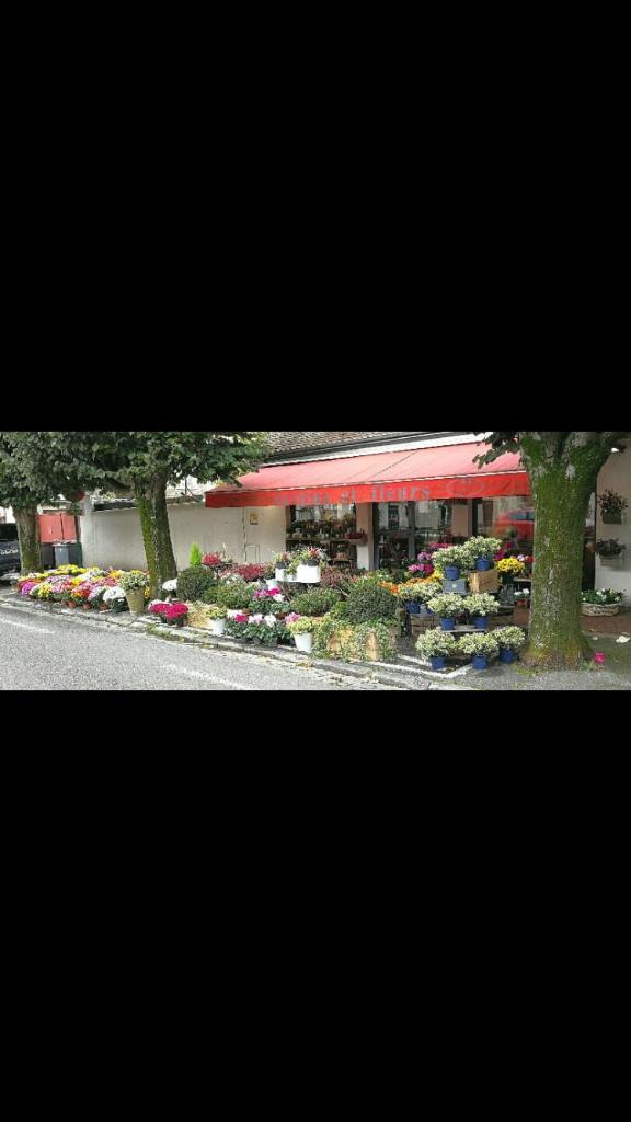 Jardins Et Fleurs Fleuriste 39 Bis Boulevard General Leclerc
