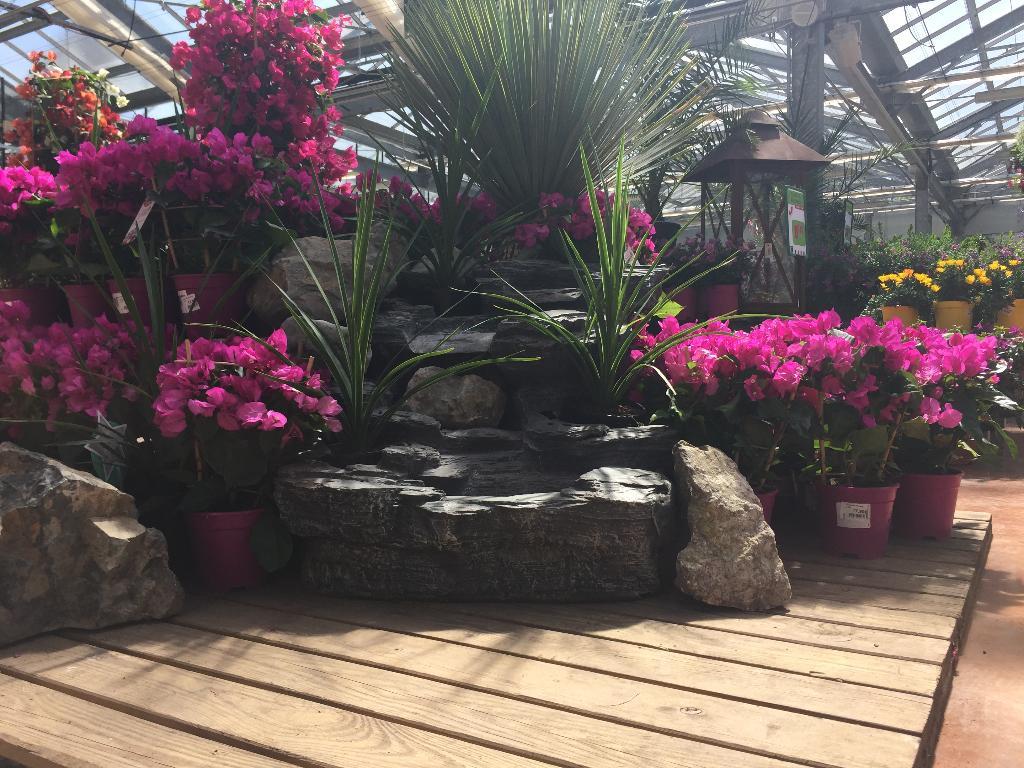 jardin fleuri lyon (adresse, horaires, avis, ouvert le dimanche)