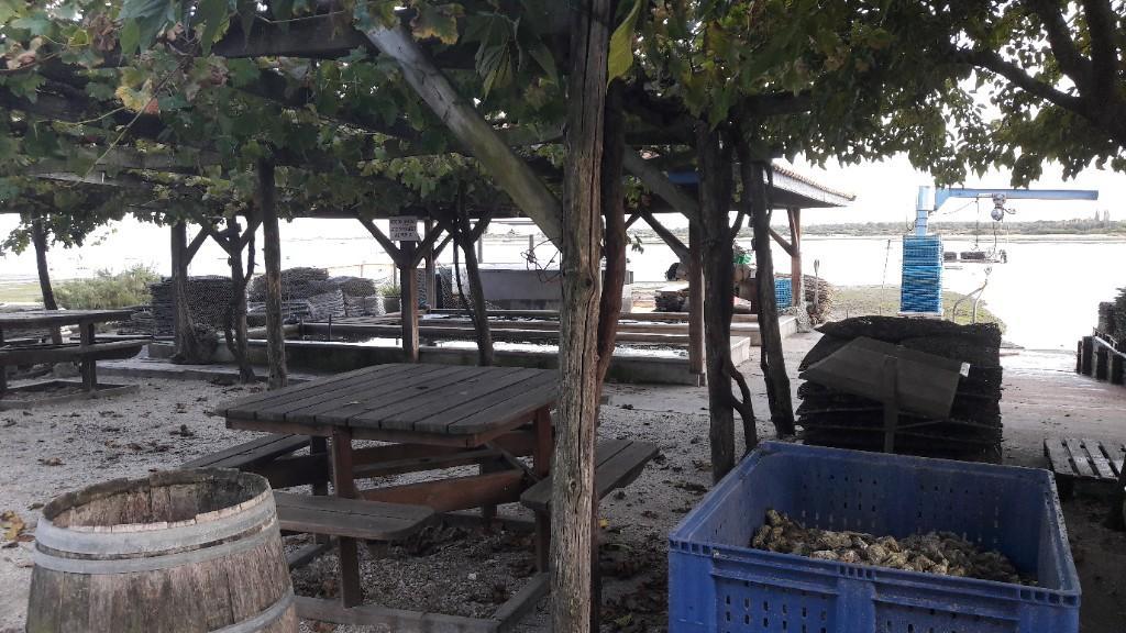 La cabane de l 39 aiguillon restaurant 54 boulevard pierre loti 33120 arcachon adresse horaire - La cabane de l aiguillon ...