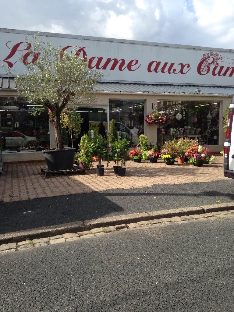 la dame aux camelias - fleuriste, 16 rue camille desmoulins 18100