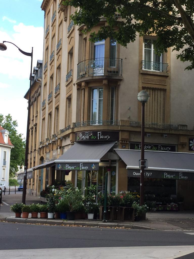 Le plaisir des fleurs fleuriste 20 avenue de nancy for Adresse fleuriste