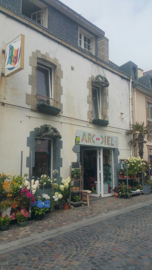 Arc en ciel fleuriste 22 rue de port maria 56170 for Adresse fleuriste