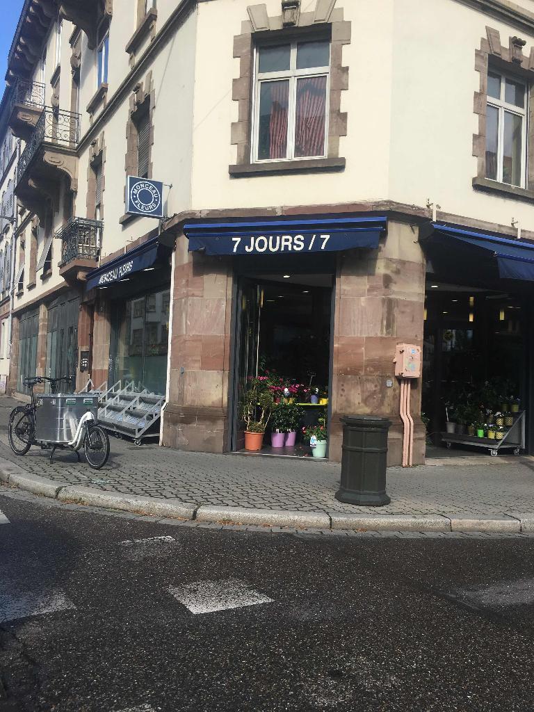 Monceau fleurs fleuriste 23 rue molsheim 67000 for Adresse fleuriste