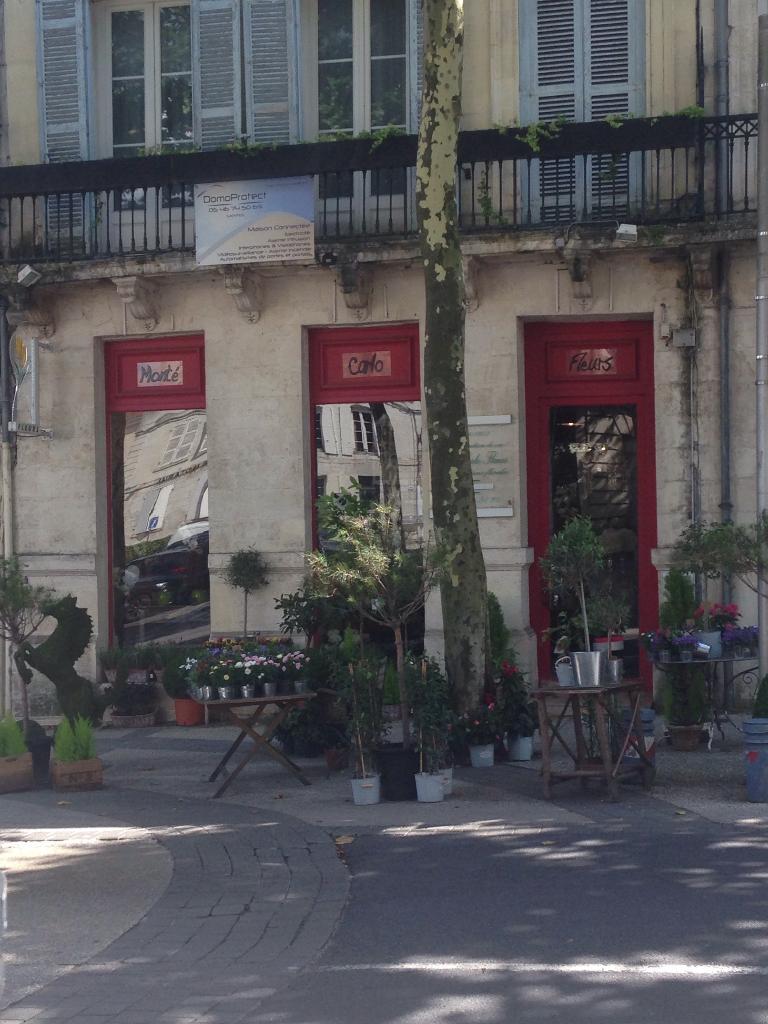 monte carlo fleurs - fleuriste, 71 cours national 17100 saintes