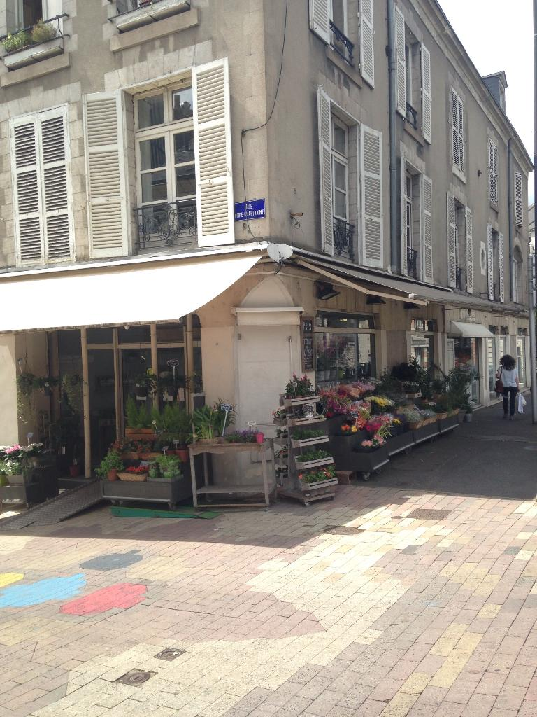 Roses et sens fleuriste 46 rue porte chartraine 41000 for Adresse fleuriste