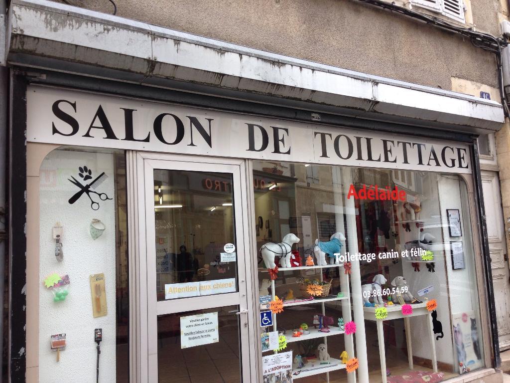 Salon de toilettage ad la de toilettage de chiens et de for Salon de ja