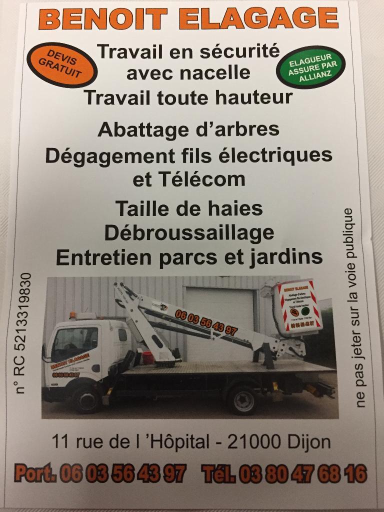 Entretien espaces verts dijon 21 bons baisers de dijon for Entretien jardin handicapes